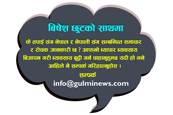 gulminews contact