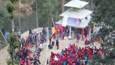 Photo of दोस्रो स्वर्गद्धारी 'अस्कुना' गुल्मीमा, प्रवद्र्धन गरिदै