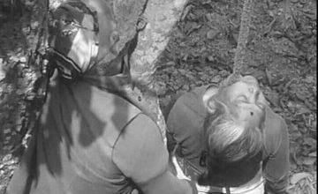 Photo of गुल्मीमा बृद्ध दम्पतिले गरे आत्महत्या, नयाँ बर्षमा बिपन्न परिवारमा शोक