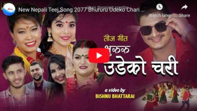 """Photo of देवी घर्तीको नयाँ तीज गीत """"भुरुरु उडेको चरी"""" सार्वजनिक (भिडियो सहित)"""